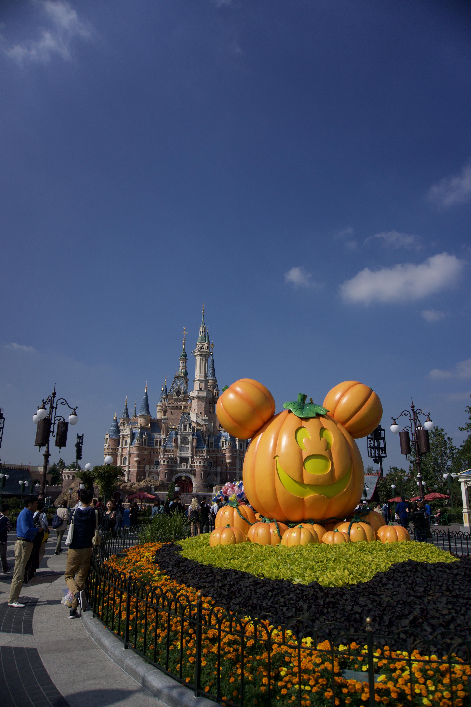 Micky Kürbis Halloween