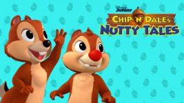 Kleine Abenteuer mit Chip und Chap
